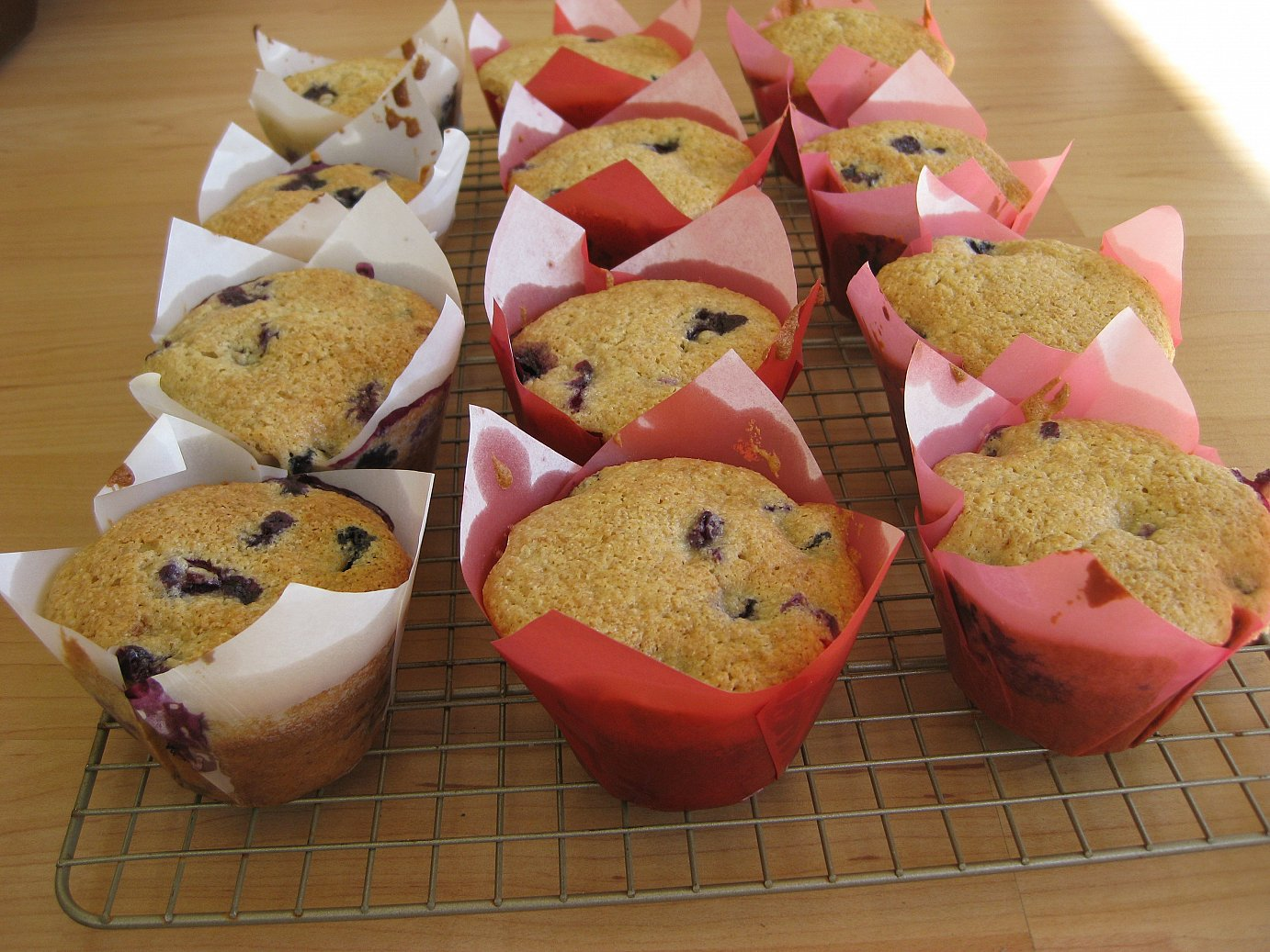 WW Blueberry Muffins and paper liners