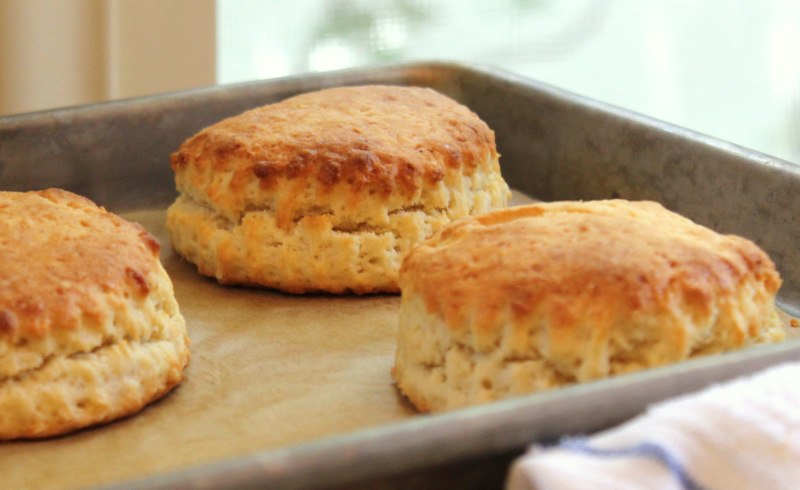 Paula Deen's Cream Biscuit recipe